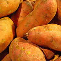 sweet-potatoes2